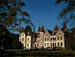 17 - SAINT-MAIGRIN - Chateau - - Autres Communes