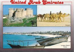 E.A.U. -  U.A.E. - DUBAI - Fujaira - Jumaira Beach - Camels - 1994 - Dubai