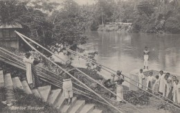 Indonésie - Indonesia - Bamboos Transport - Construction Travaux - Indonesia