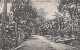 Indonésie - Indonesia - Weg In De Kampong - Indonesia