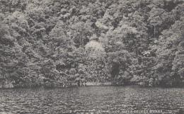 Indonésie - Indonesia - Het Meer Telaga Warna - Lake Telaga Warna - Indonésie