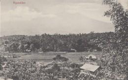 Indonésie - Indonesia - Rijstvelden - Rice Field - Indonesia