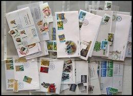 IRLAND Brief,o , 1980-90, Partie Diverser Ausgaben, Fast Nur Auf FDC`s Und Einzelmarken, Pracht, Mi. über 400.- - Ireland