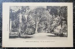 Reunion Saint Denis Coin Jardin Colonial  Cpa Ile Reunion - Saint Denis