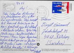 Iceland  Cards  To Sweden   Minr.767   ( Lot  485 ) Horses - 1944-... Republique