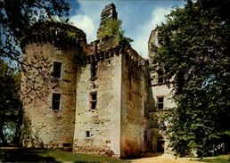 24 - ROUFFIGNAC - Chateau - France