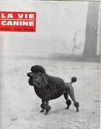 LA VIE CANINE MENSUEL No 137 MAI 1964 - Animals