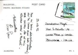 Maldive,  Uccello Bianco  Val 350, Anni '90 Francobollo Su Cartolina - Maldive (1965-...)