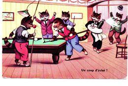Animaux : Chats Humanisés - Katten