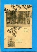 Rovigo-bi Vues -ingresso Cotoniffici Vialeboaro A Voyagé En 1916-édition Bedinello - Rovigo
