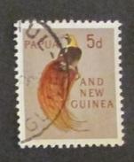 Papua E Nuova Guinea 1963 Birds 5d Used - Papua Nuova Guinea