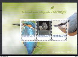 Nederland 2017 Vogels, Birds, Jaarvogels : Ijsvogel, Kingfisher, Steenuil, Owl, Boomklever, Nuthatch: Foto A. Ten Hoeve - Neufs