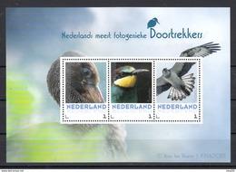 Nederland 2017 Vogels, Birds, Doortrekkers: Ooievaar, Stork, Bijeneter, Visarend, Osprey: Foto A. Ten Hoeve - Period 2013-... (Willem-Alexander)