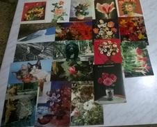 19 CART. DIVERSE: SOGGETTI VARI (15) - Cartoline