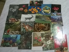 19 CART. DIVERSE: ANIMALI - FIORI (16) - Cartoline