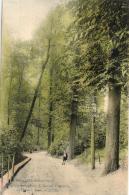 BELGIQUE - BRUXELLES - SCHAERBEEK - Vallée Josaphat. L'Ancien Chemin. (n°153). - Schaarbeek - Schaerbeek