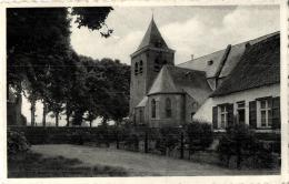 BELGIQUE - ANVERS - HOOGSTRATEN - WORTEL - Kerk Van St Jan-Baptiste (n°1). - Hoogstraten