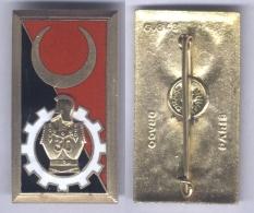 Insigne Du 30e Bataillon Mixte D'Entretien Et D'Entrepôt Du Génie - Esercito