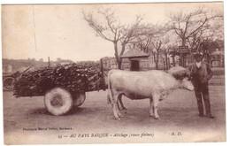 AU PAYS BASQUE - Attelage ( Roues Pleines) - France