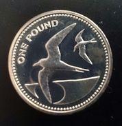"Saint Helena Island 1 POUND 1984 SILVER PROOF Piedfort "" Sooty Terns (Wideawake Birds) "" Free Shipping Via Registered - Sint-Helena"