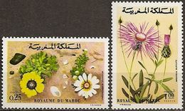 Maroc 0687/688 ** MNH. 1973 - Morocco (1956-...)