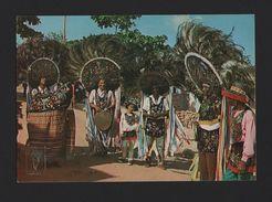 BRAZIL POSTCARD 1970s BRASIL ETHNIC FOLKLORE DANCE MUSIC BUMBA SÃO LUIS MARANHÃO - Postcards