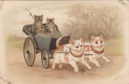 CPA  CHATS  Attelage     Précurseur - Cats