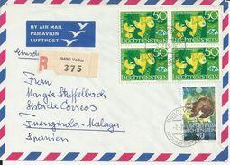 ENVELOPPE LIECHTENSTEIN AVEC 5 TIMBRES ET VIGNETTE R 9490 375 ANNEE 1969 - Covers & Documents