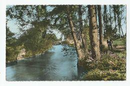 38 Isère Pont De Cheruy Charvieu  Pecheur Bords De La Bourbre 1961 - Pont-de-Chéruy