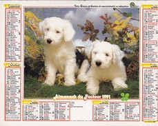 Almanach Du Facteur OLLER  Calendrier  LA POSTE 1991 60 OISE - Big : 1991-00