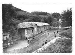 07 – BURZET : La Colonie « Les Eaux Vives » De Carpentras N° A. 79621 - Francia