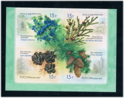 RU1368 Russia 2013 Pinecone Sticker Stamp 4 - 1992-.... Federation