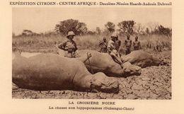 EXPEDITION CITROEN CENTRE AFRIQUE LA CHASSE AUX HIPPOPOTAMES OUBANGUI CHARI - Cartes Postales
