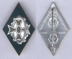Insigne De La 251e Compagnie De Circulation Routière - Armée De Terre