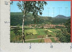 CARTOLINA VG ITALIA - TRAVESIO (PN) - Panorama - 10 X 15 - ANN. 1987 - Pordenone