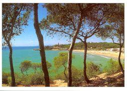 Espagne - Cataluña - Costa Daurada - Torre De La Mòra (Tarragona) - Triangle Postals Nº 556.5 - Neuve - 2570 - Tarragona