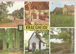 Brecht Vraegheide (e898) - Brecht