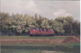 Die Eisenbahn Und Umfeld - Priv. Kodak Fotos AK-Grösse **074** - Treni