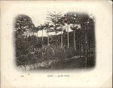 Campagne DUGUAY-TROUIN 1902-1903 - Voilier - Expédition - PEROU - LIMA - Jardin Public - Pérou