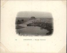 Campagne DUGUAY-TROUIN 1902-1903 - Voilier - Expédition - CHILI - CONCEPCION - Route De Talcahuano - Chili