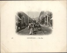 Campagne DUGUAY-TROUIN 1902-1903 - Voilier - Expédition - CHILI - CONCEPCION - - Chili