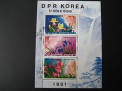 DPR Korea Sonderstempel 1979 Block Orchideen - Korea, North