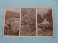 "TROUT MOOI RIVER - THE KLOOF, MALONEYS EYE - "" THE RIVER "" OITHOEK ( F. 875 ) Anno 19?? ( Zie Foto Voor Details ) !! - Afrique Du Sud"