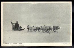 GROENLAND - Retour Du Traîneau à Chasse - Greenland