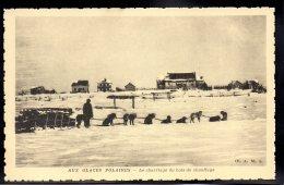 USA - ALASKA - Aux Glaces Polaires - Le Charriage Du Bois De Chauffage - Etats-Unis