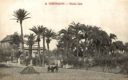 CARTAGENA MEDIA SALA - Murcia