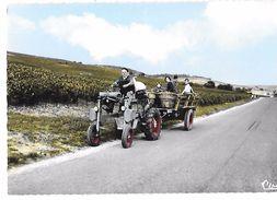 AGRICULTURE - VENDANGES EN CHAMPAGNE - TRACTEUR -    Editions COMBIER CIM à MACON - Tracteurs