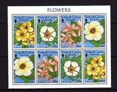 Turks And Caicos Flowers MNH -(V-45) - Planten