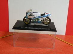 MOTO 1/24 > Yamaha TZ250L Christian Sarron 1984 (sous Vitrine) - Motorcycles