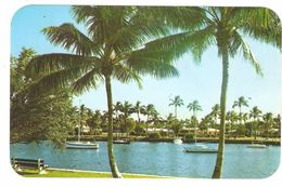 Florida - A Tranquil Setting In Picturesque Florida - Rounded Corners - Etats-Unis